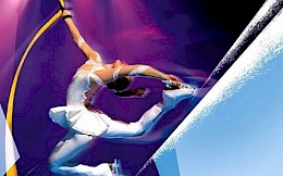 Show Moscow Circus on Ice